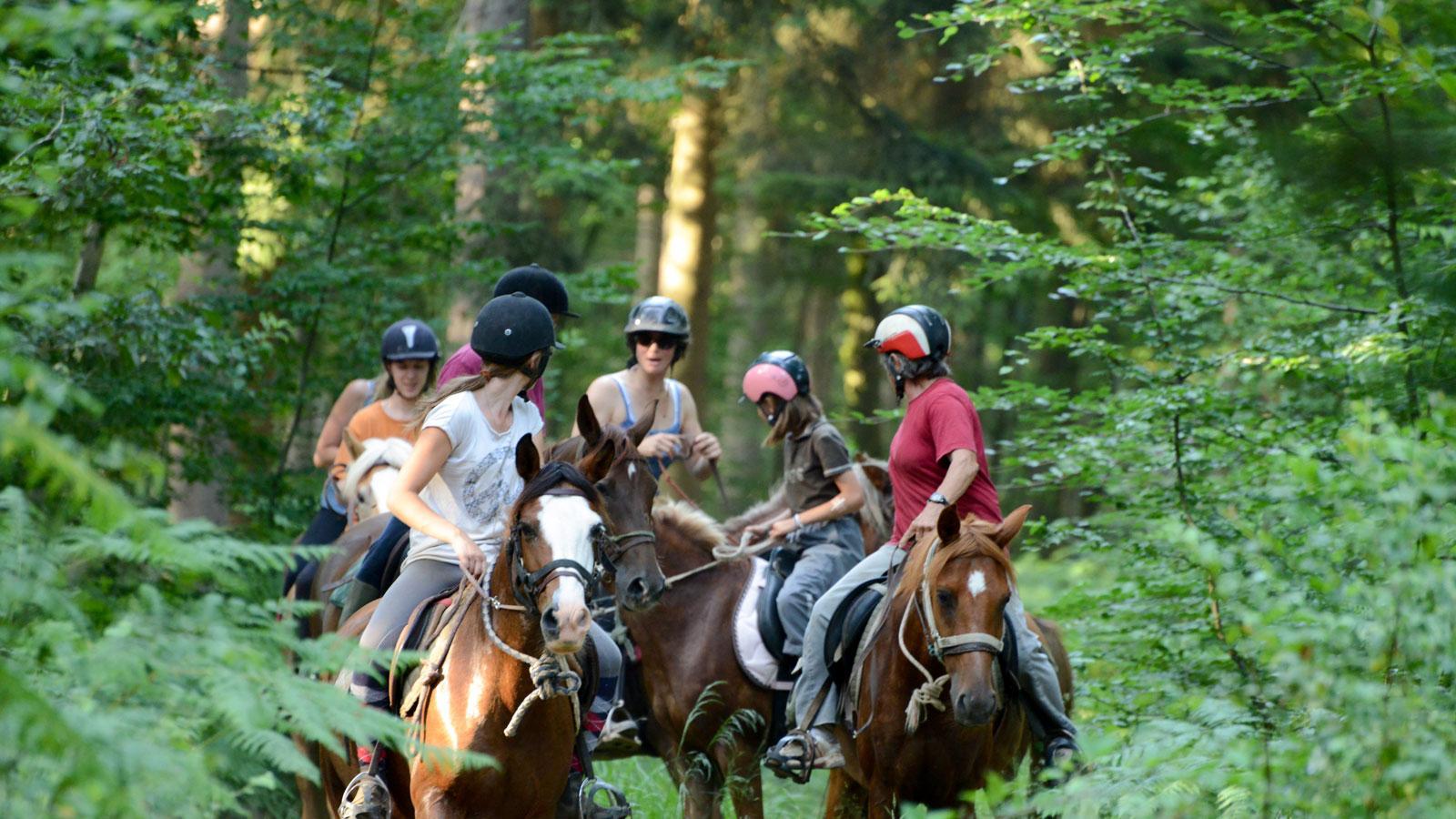 Balade à cheval dans les Ardennes