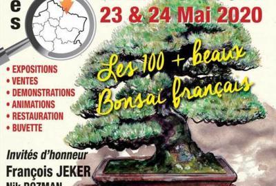 Le congrés Français du Bonsaï