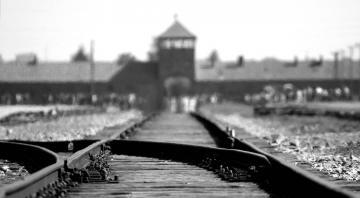 Spectacle : Michelle doit-on t'en vouloir d'avoir fait un selfie à Auschwitz ?