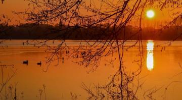 Lac de Sedan