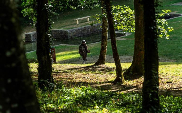 Sortie nature : Entre bois et pâture, découvrez la richesse d'Elan