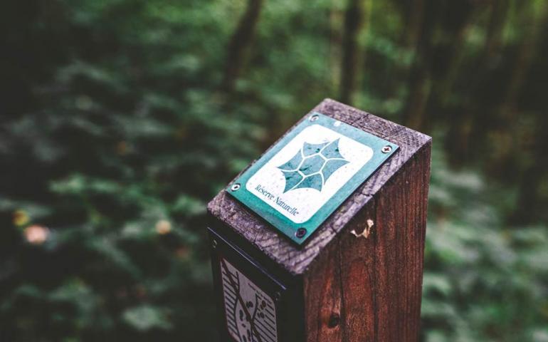 Sortie nature : Jeu de piste à la réserve de Bois-en-Val